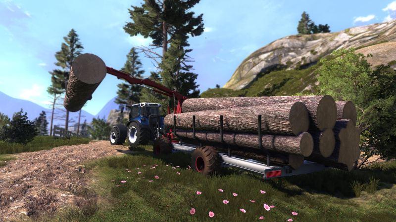 Lumberjack's Dynasty | Toplitz Productions