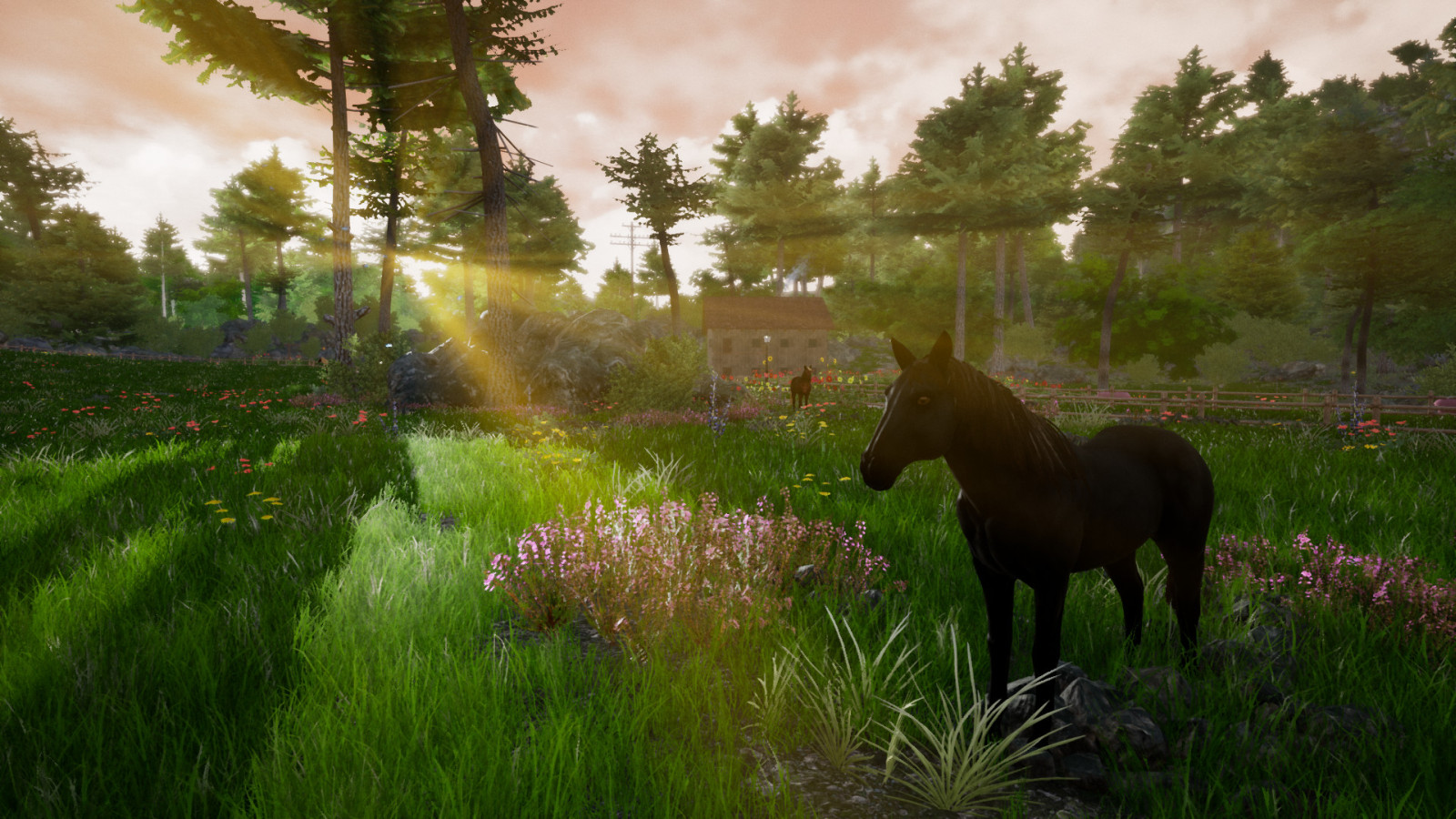 Horse Riding Deluxe 2 | Loot Inside